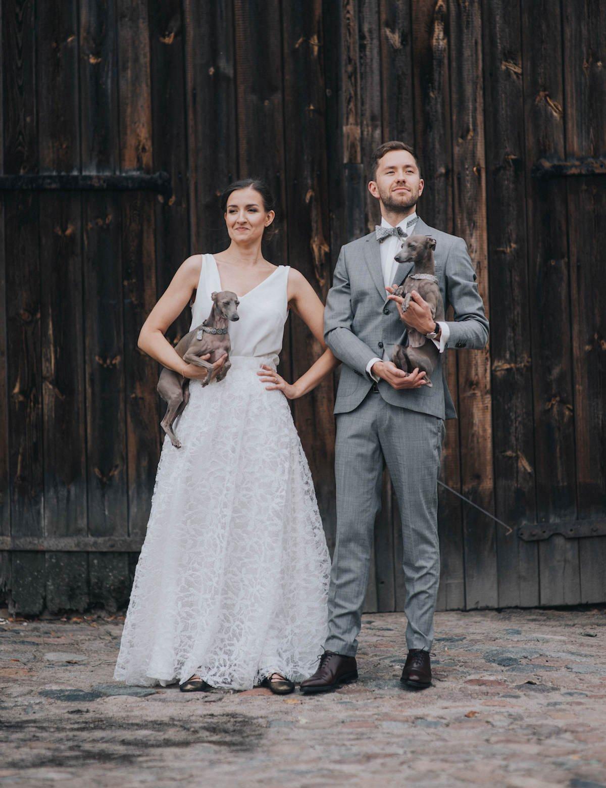 sesja w dniu ślubu, portret pary młodej z psami