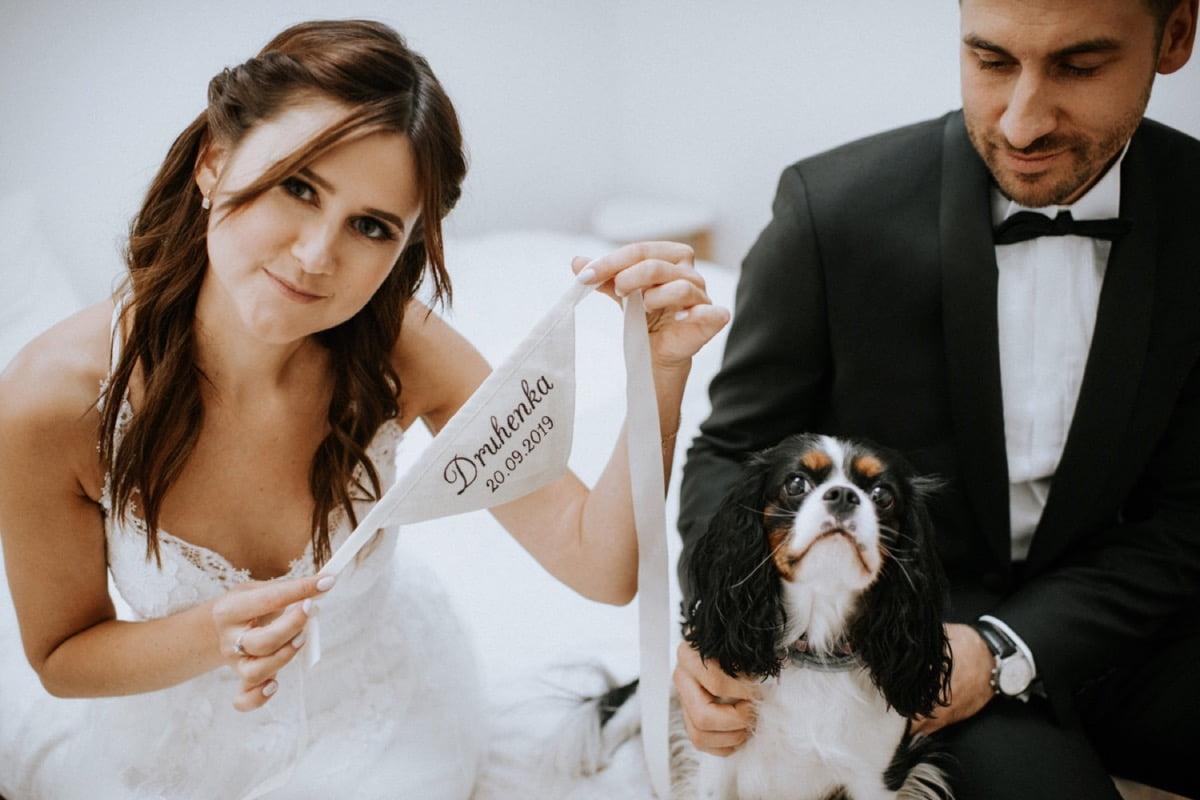 pies na ślubie, ślub z psem, ubranka dla psa